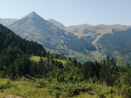 3-Sarrau-Pico Celer